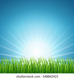 Abstract vector rising sun over green grass background.