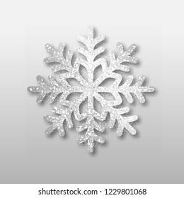 Abstract vector silver snowflake