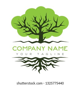 Abstract vibrant tree logo design, root vector - Tree of life logo design inspiration isolated on white background - Vector