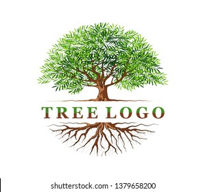 Abstract vibrant Tree and roots logo template vector, Tree with round shape the name of logo in the middle