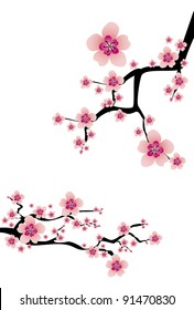 фотообои abstract white background with cherry blossom