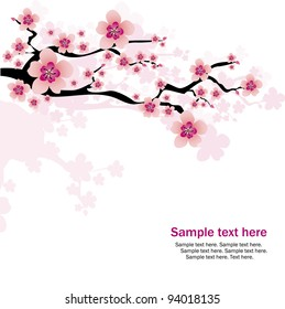 фотообои abstract white background with cherry blossom and text