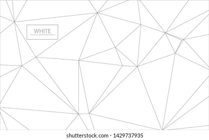 Abstract white polygon background vector EPS.10