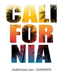 Abstrat California Palm Background Vector Illustration EPS10