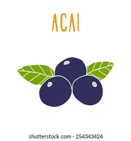Acai berries. Vector EPS 10 hand drwn illustration