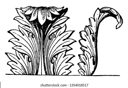 Acanthus Decoration is an acanthus decoration of an architectural column, vintage line drawing or engraving illustration.