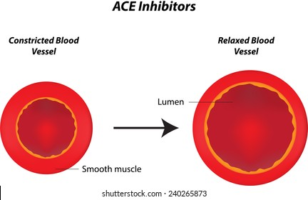 Angiotensin Converting Enzyme Inhibitors Images, Stock