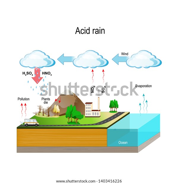 Acid Rain Caused By Emissions Sulfur Stock Vector  Royalty