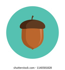 Acorn flat icon isolated on blue background. Simple acorn sign symbol in flat style. Autumn element Vector illustration for web and mobile design.