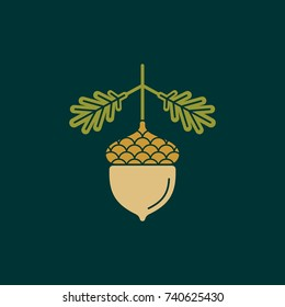 Acorn flat vector icon of logo. Vector illustration of an acorn