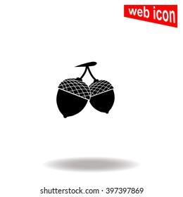 Acorn icon.