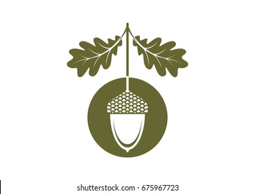 Acorn icon or logo in modern line style. Vector illustration on a white background.