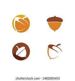 Acorn logo ilustration vector template
