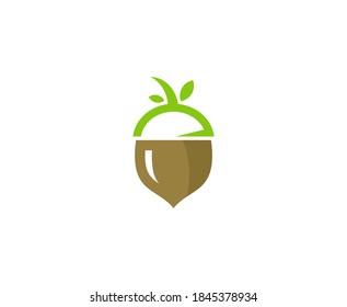Acorn logo oak leaf vector