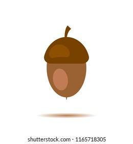 Acorn, oak nut, seed. Made in cartoon flat style