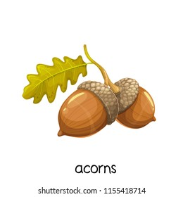 Acorns with leaves. Vector illustration for autumn design decorations of postcards and etc. Cartoon style.