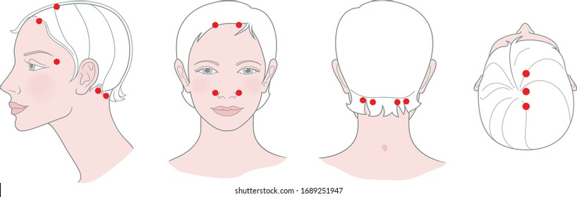 Active acupuncture points for massage with a headache. Traditional Chinese medicine. Vector illustration