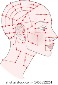 Active acupuncture points on the profile template Girl with shaved bald hairless head and a beautiful skull. Vector image