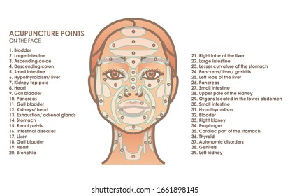 Acupuncture points on the face. Young woman face. Vector illustration for your design