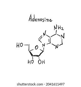 Adenosin molecule formula. Hand drawn imitation structural model, chemistry skeletal formula, adenosin sketchy vector symbol
