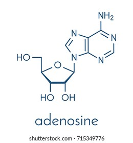 Adenosine (Ado) purine nucleoside molecule. Important component of ATP, ADP, cAMP and RNA. Also used as drug. Skeletal formula.