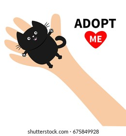 Adopt me. Hand arm holding black cat. Animal pet. Helping hands concept. Funny gift. Cute cartoon character. Close up body part. Flat design style. White background. Isolated. Vector illustration