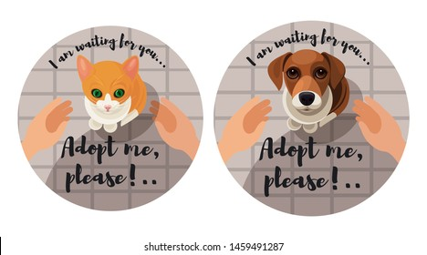 Adopting homless animals sticker set. The cat/dog is looking up imploringly in your eyes, hands reach to animal to take it. Vector illustration for animal shelter