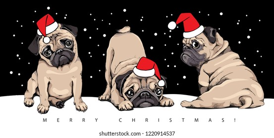 Adorable beige puppies Pugs in a red Santa's cap at a snow night. Christmas and New Year card composition, handmade vector illustration.