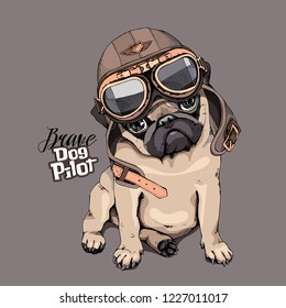 Adorable beige puppy Pug in a aviator helmet. Brave dog pilot - lettering quote. Humor card, t-shirt composition, hand drawn style print. Vector illustration.