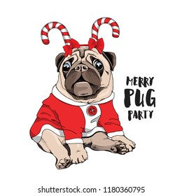 Adorable beige puppy Pug in a fun lollipop headband and in a red jacket. Merry pug party - lettering quote. Christmas and New Year card, t-shirt composition, handmade vector illustration.