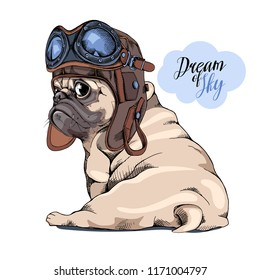 Adorable beige puppy Pug in a Pilot helmet with glasses. Dream of sky - lettering quote. Humor card, t-shirt composition, hand drawn style print. Vector illustration.
