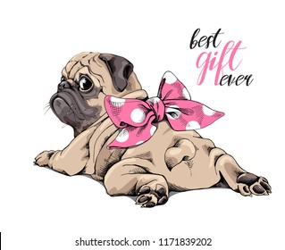 Adorable beige puppy Pug with a pink polka dot bow. Best gift ever - lettering quote. Humor card, t-shirt composition, hand drawn style print. Vector illustration.