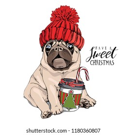 Adorable beige puppy Pug in a red knitted hat and with a coffee. Have a sweet christmas - lettering quote. New Year card, t-shirt composition, handmade vector illustration.
