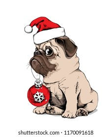 Adorable beige puppy Pug in a Santa's cap and with a red Christmas glass toy. New Year card, t-shirt composition, handmade vector illustration.