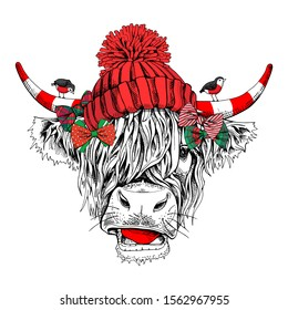 Adorable Cow with bangs in a red knitted hat with pom pom, bows and with a birds. Christmas and New year card, Humor composition, hand drawn style print. Vector illustration.