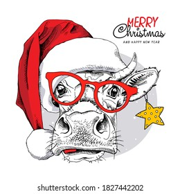 Adorable Cow in the red Santa's hat, in the glasses and with a star. Merry Christmas and New year card, Humor composition, hand drawn style print. Vector illustration.