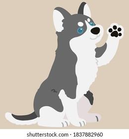 Adorable flat colored grey Husky dog sitting and waving hand illustration