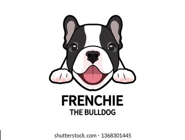 Adorable Full Color French Bulldog Face Logo Mark. Cute chubby frenchie in good mood is waiting for his snack.