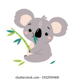 Adorable Koala Eating Eucalyptus Tree Leaves, Lovely Australian Animal Cartoon Character Vector Illustration