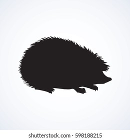 Adorable spiky Erinaceinae stand on white backdrop. Dark ink hand drawn picture in art retro print style. Closeup view with space for text on earth