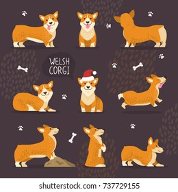 Adorable welsh corgi dogs with yellow fur set that play, do tricks and in christmas hat isolated vector illustrations on white background.