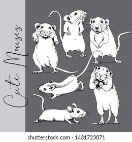 Adorable white Little Mouses. Сollection of a characters. Humor set, hand drawn style print. Vector illustration.