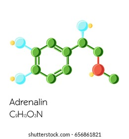 Adrenalin (Adrenaline, Epinephrine) hormone structural chemical formula isolated on white background. Cartoon vector illustration in flat style.