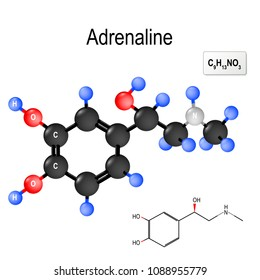 Adrenaline (epinephrine) is  a hormone, neurotransmitter, and medication. Produced by the adrenal glands and neurons. Structural chemical formula and model of molecule of adrenalin