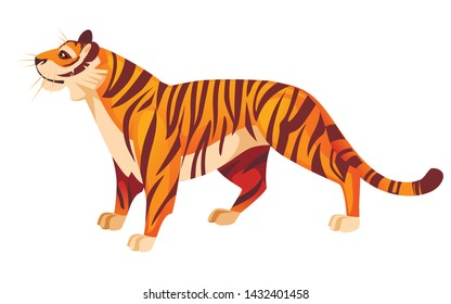 Adult big red tiger stand on ground with head looks up wildlife and fauna theme cartoon animal design flat vector illustration isolated on white background
