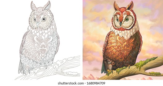 Adult coloring book. Owl bird. Colorless and color sample painted in watercolor imitating style. Coloring design with doodle and zentangle elements. Vector illustration.