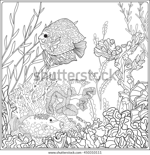 Find Fish Hidden in the Coral Reef coloring page   Free Printable ...   620x600