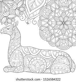 Adult coloring book,page a cute lama on the floral background image for relaxing.Zen art style illustration for print.