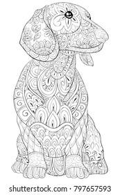 Adult coloring book,page a cute little isolated dachshund for relaxing.Zen art style illustration.