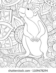 Adult coloring book,page a cute rat on the floral background for relaxing.Zen art style illustration.